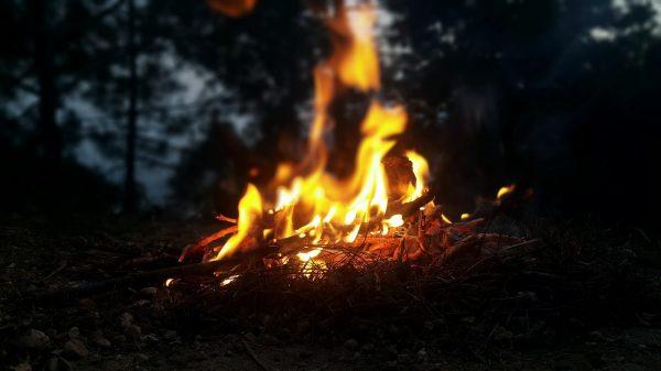 ein Lagerfeuer im nächtlichen Wald